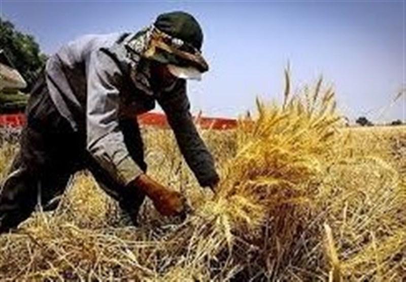 نرخ سود وام اشتغال روستایی در صورت انحراف منابع ۱۸ درصد میشود