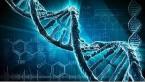 تدریس خصوصی ژنتیک